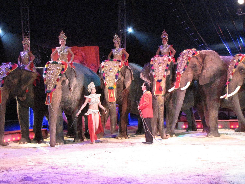 Zirkus Krone Dauer Vorstellung