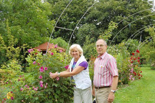 Klettergerüste Für Rosen : Imgenbroich traumhaftes paradies aus rosen