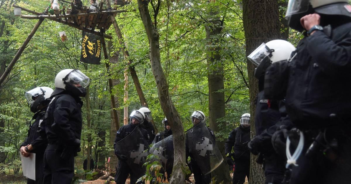 Kletterausrüstung Aachen : Baumhäuser im hambacher forst werden geräumt