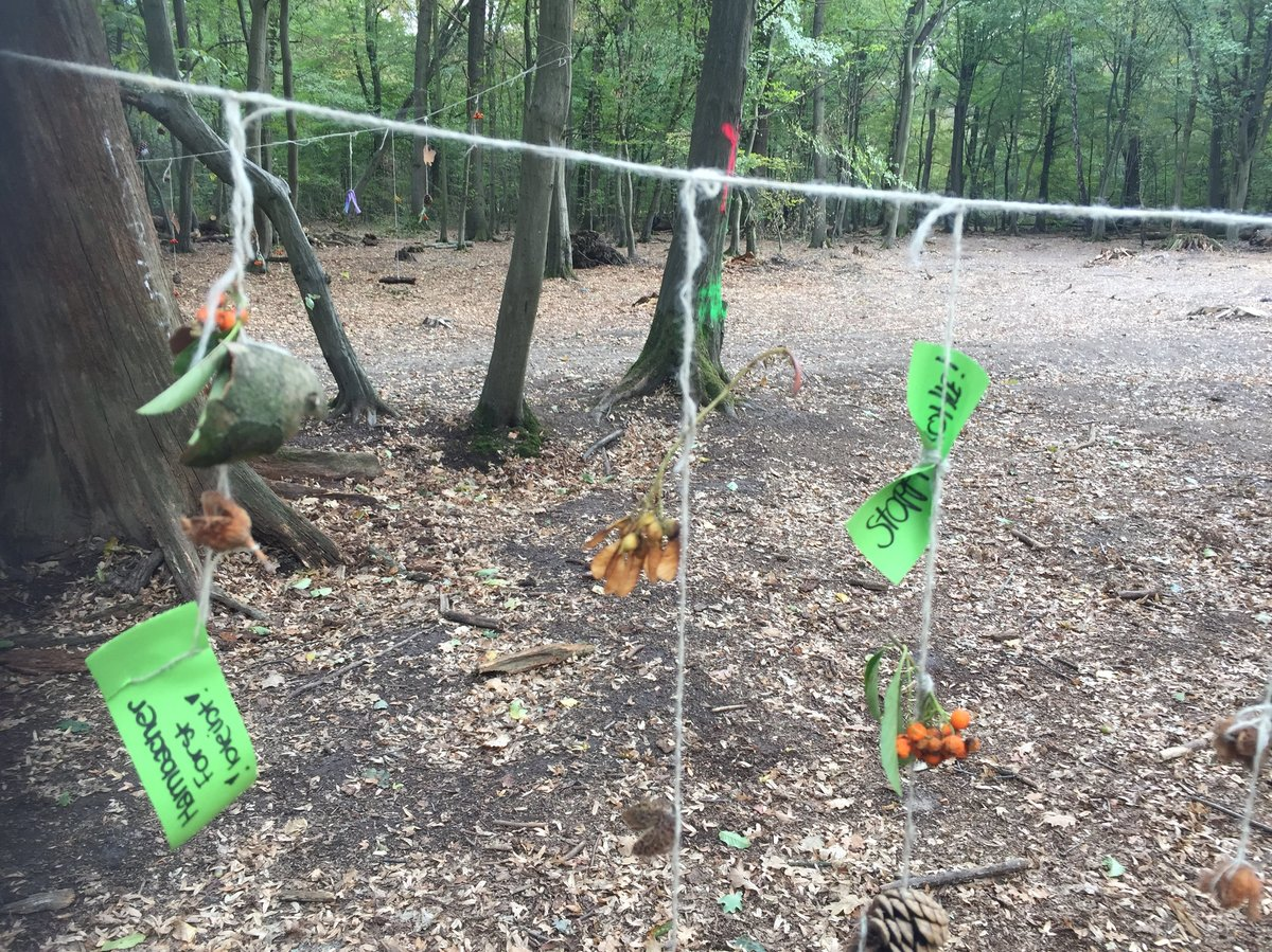 Hambacher Forst: Polizei verbietet Großdemo am Samstag